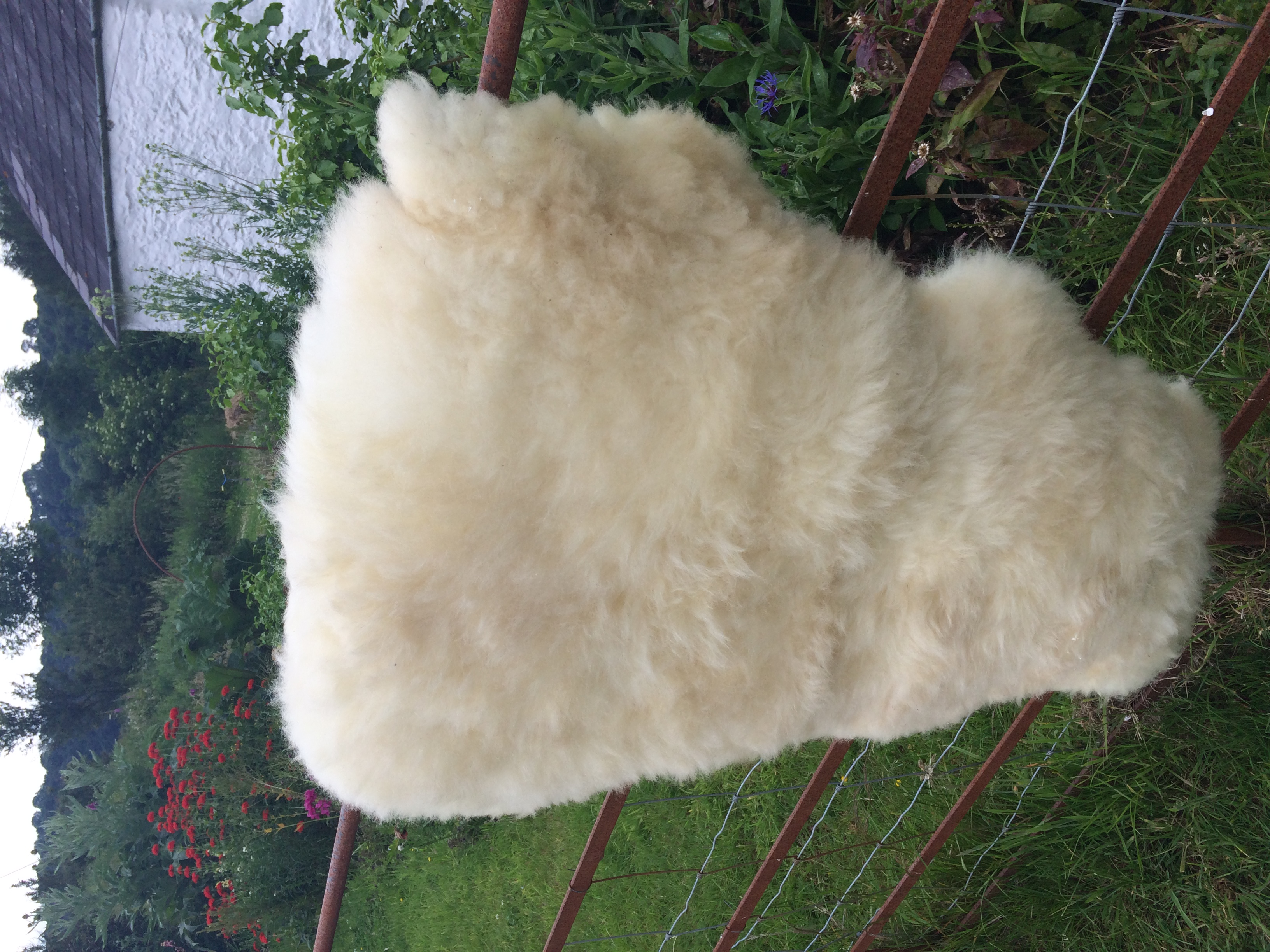 Organic Llanwenog Sheepskin  - CD Available to buy now