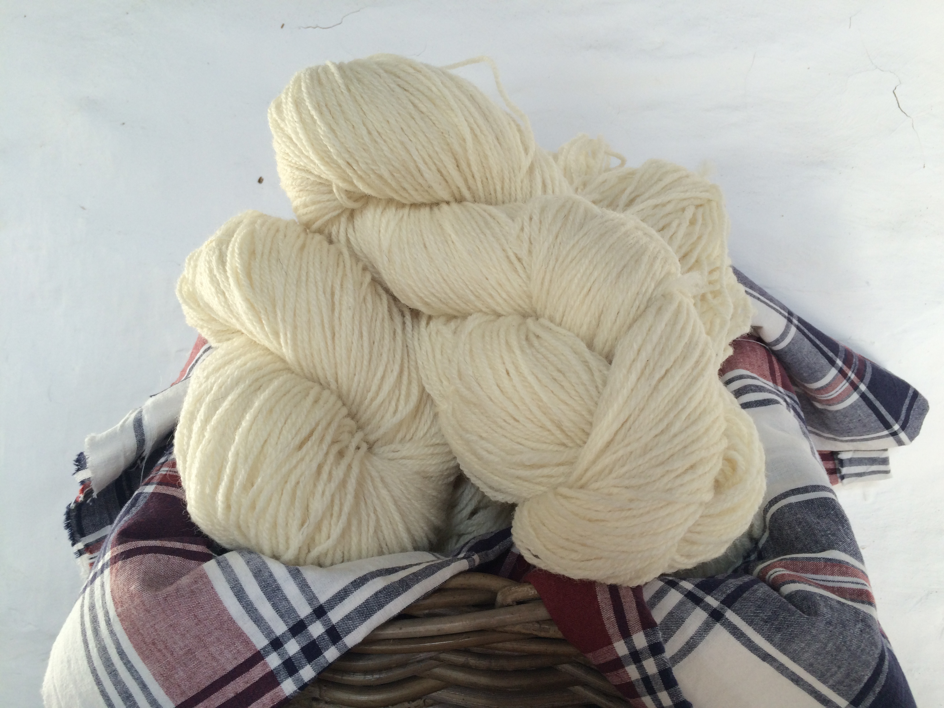 Llanwenog knitting yarn, double knit  - CD Available to buy now